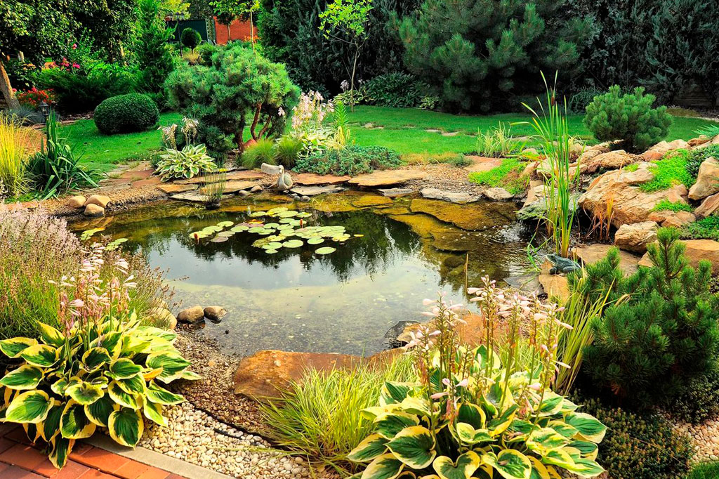 img-solutions-pond